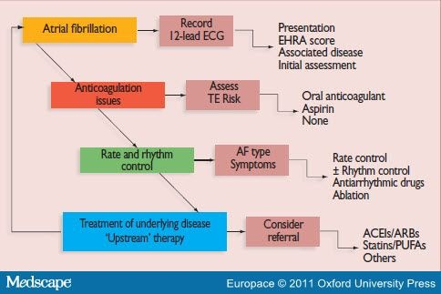 acute atrial fibrillation management guidelines