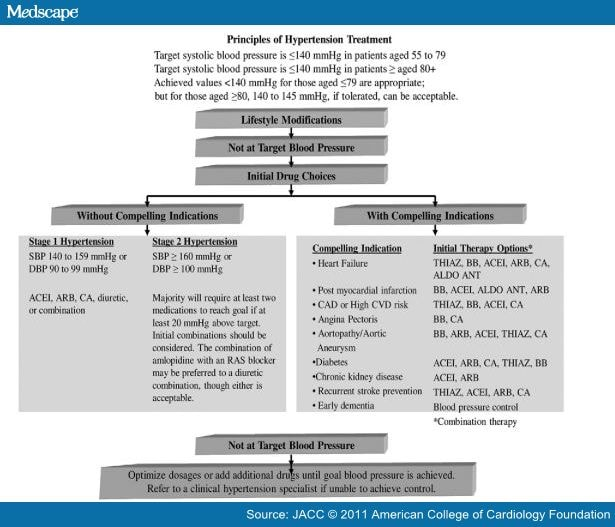 national heart foundation absolute cardiovascular risk guidelines