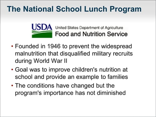 improving nutrition in school lunches essay Nearly 100,000 schools/institutions serve school lunches to 30 million  about school meals  the school nutrition association has a presence in every state.
