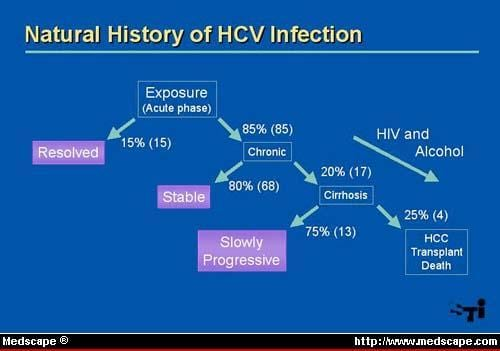 hcv overview