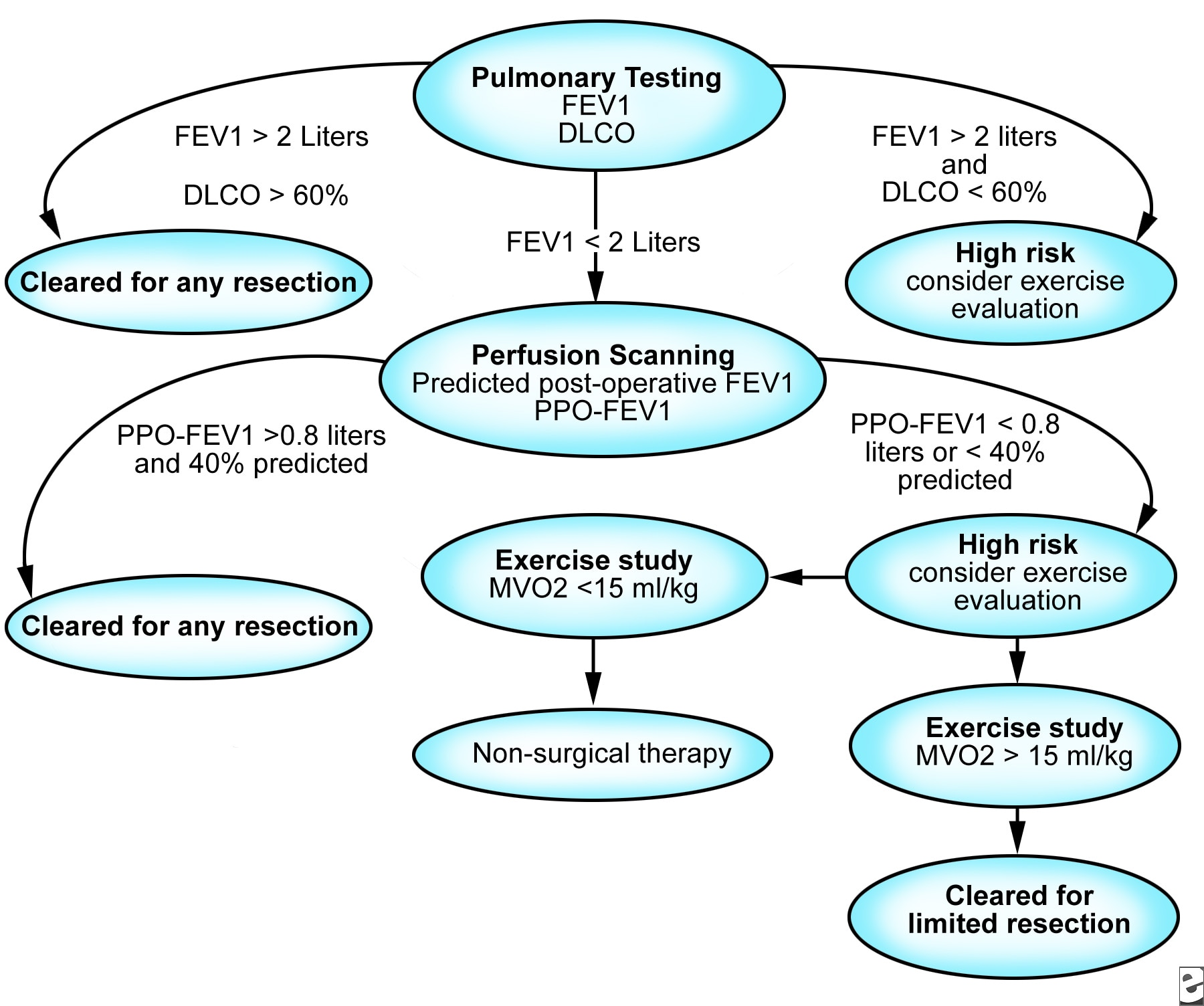 An algorithm for assessing candidates for lung re...