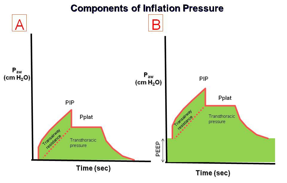 The effect of positive end-expiratory pressure (P...