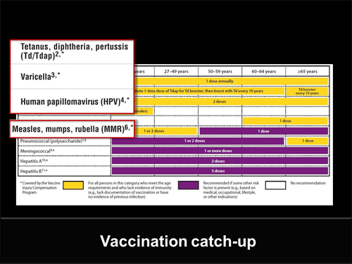 View the 2012 Recommended Adult Immunization Schedule. Slide 15.