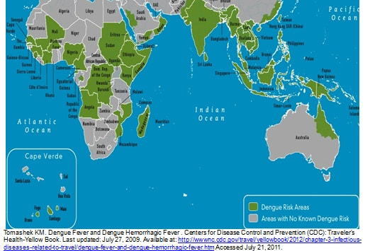 Eastern Hemisphere Map With Countries  3  The above map shows the