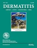 Image result for Dermatitis journal
