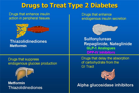 Researchers find a potential target for the treatment of type 2 diabetes