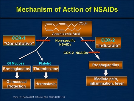 action of steroidal anti inflammatory drugs