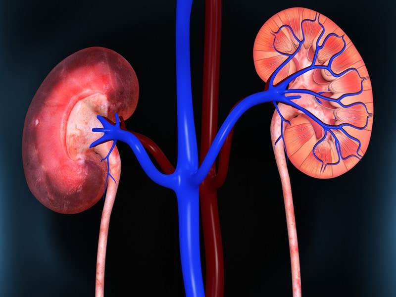 lupus nephritis affects one third of patients with lupus, Skeleton
