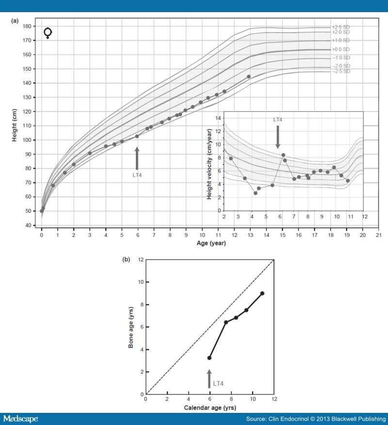 single dose amoxicillin for uti