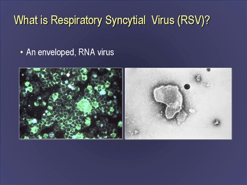 Is rsv contagious for adults