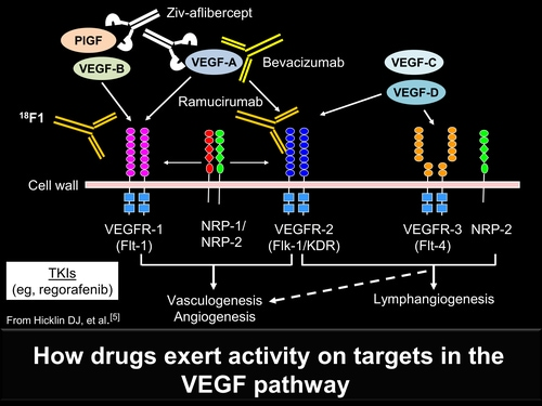 New Ways To Inhibit The Vegf Pathway In Metastatic