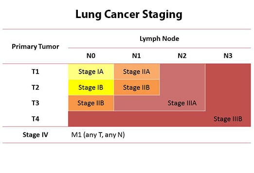 the main features of lung cancer Bronchioloalveolar carcinoma of the lungs (bac), as noted above, has now been reclassified as a form of lung cancer that said, research on bac can still be helpful in describing this particular type of tumor, and some oncologists may still use the term.
