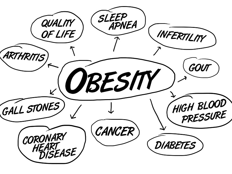 Dozens Of Societies Seek Ways To Collaborate On Obesity