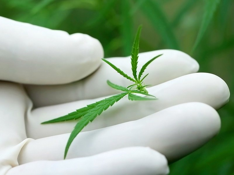Urgent Need for More, Better Medical Marijuana Research