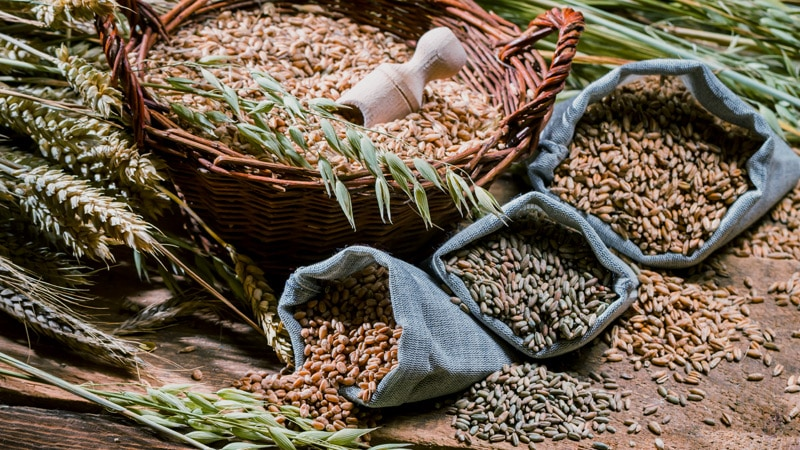 High Fiber, Whole Grains Linked to CVD, Diabetes, Cancer Risk