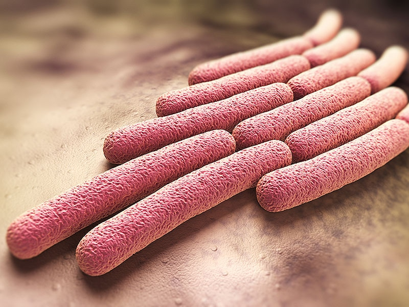 the growing concerns over antibiotic resistance Who fact sheet on antimicrobial resistance (amr) or drug resistance,   treatment of an ever-increasing range of infections caused by bacteria, parasites,  viruses and fungi  why is antimicrobial resistance a global concern.