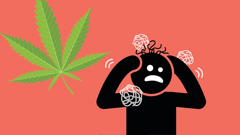 Reefer Madness: A Case of Cannabis-Induced Psychosis