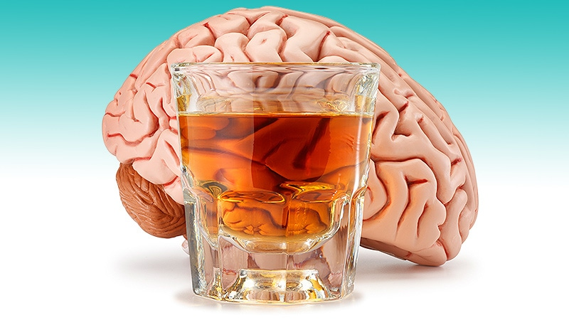 From Cradle to Grave, Alcohol Is Bad for the Brain